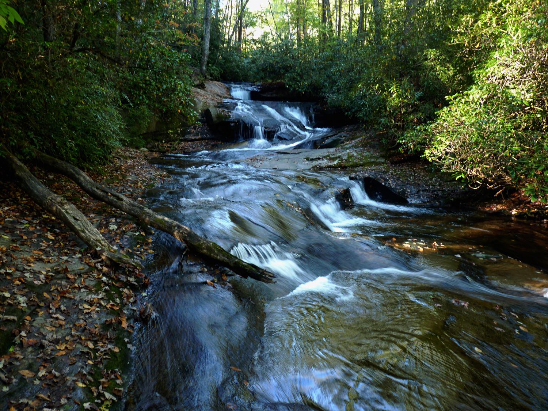 Cove Creek Cascade #1