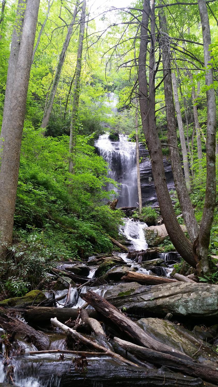 Twin Falls #1