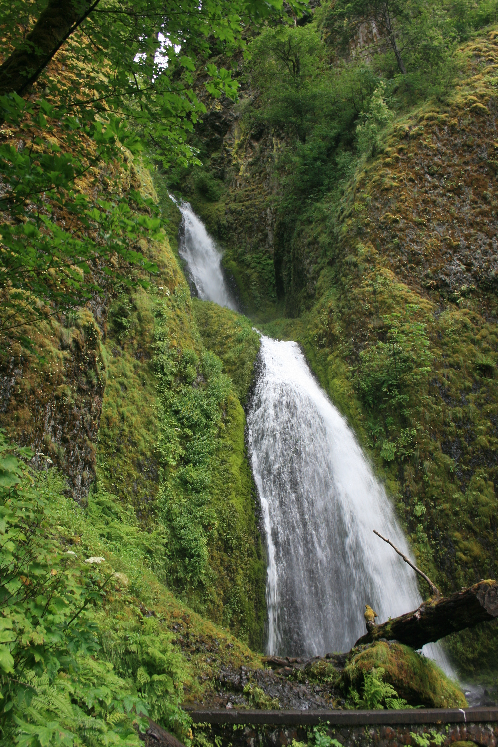 Wahkeena Falls. The crowds start to pick up again here, as you no doubt know!