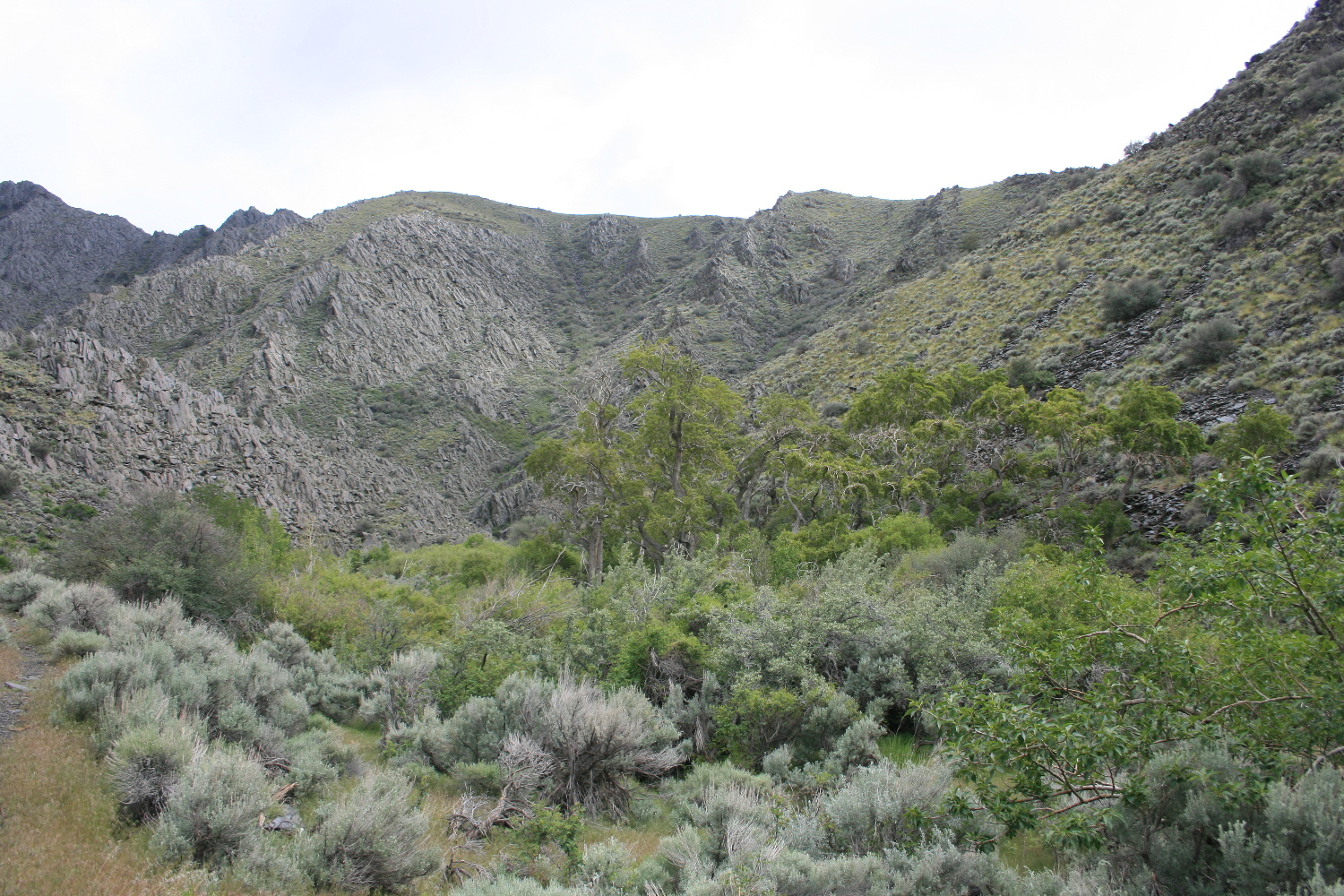 View from near the trailhead. The falls are beyond the prominent ridge coming in from the left in the middle distance.