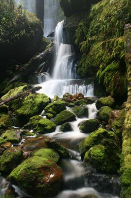 That lower cascade and Creekton Falls with the mossy creek