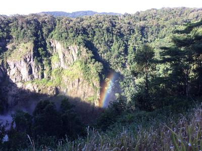 Afternoon Rainbow from Barron Falls.