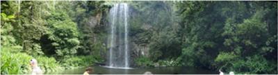 Millaa Millaa Falls QLD