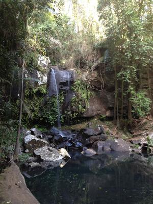 Curtis Falls with plunge pool