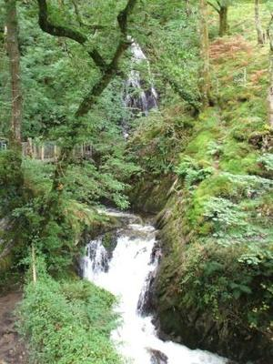 Dolgoch Middle Fall