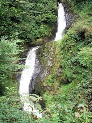 Dolgoch Upper Fall