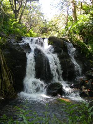 Upper Hanapueo Falls