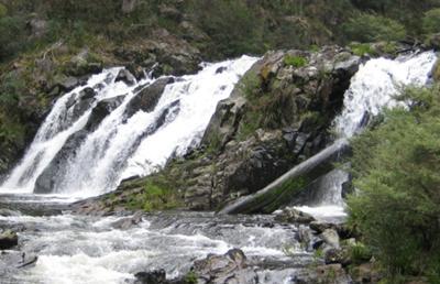 Manning River Falls