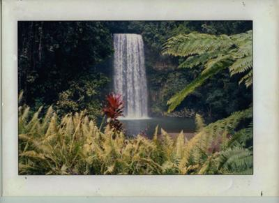 Milla Milla Falls Atherton Tablelands Queensland