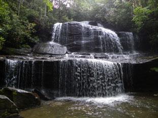 Wood Cove Falls