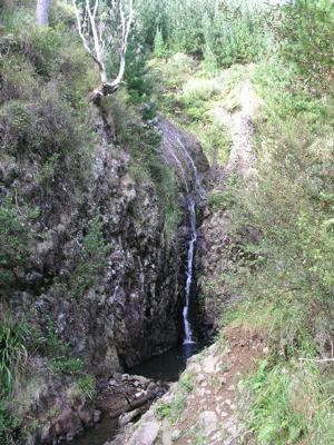 Pauanui Falls