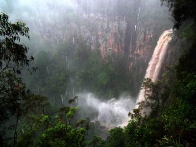 Purlingbrook Falls, Springbrook