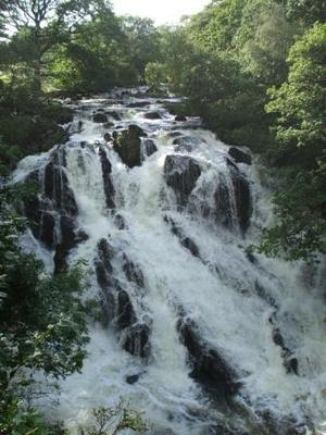 Top of Swallow Falls
