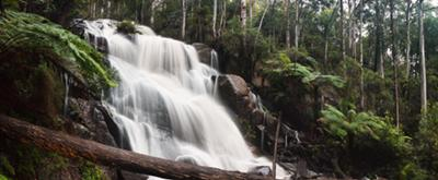 A 5-shot stitched panorama of the falls.