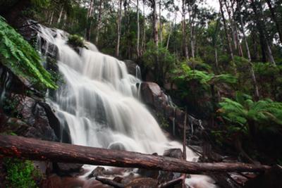 The Falls in Full Flow!