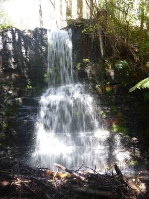 Camp Falls